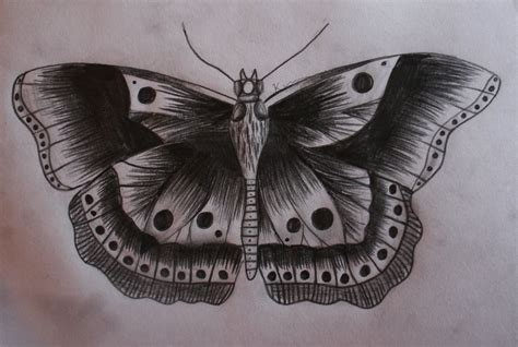 harry styles butterfly tattoo butterfly harry styles by kimmuurt on deviantart