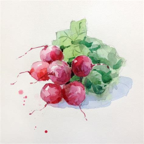 libro watercolour fruit vegetable 17 best images about watercolor fruit veggies on watercolour original paintings