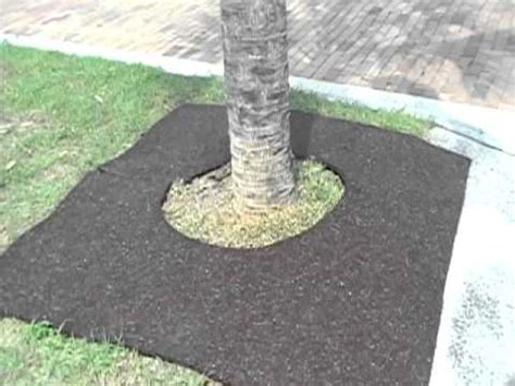 Mulch Mats For Trees by 6ft X 6ft Square Tree Ring Recycled Rubber Mulch Mat