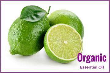 Jen Organic 10ml Juniper Berry Essential Ecocert Certified certified organic essential oils organic essential oils australia from ahimsa oils