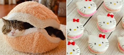 cat macaron bed cat macaron bed the best 28 images of cat macaron bed