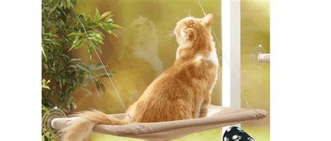 amaca gatto jzk amaca per gatti da finestra su cose di gatti
