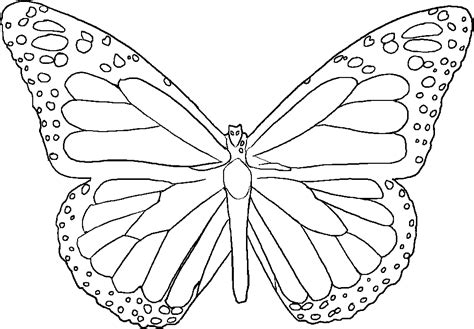 monarch butterfly template printable butterfly template to print coloring home