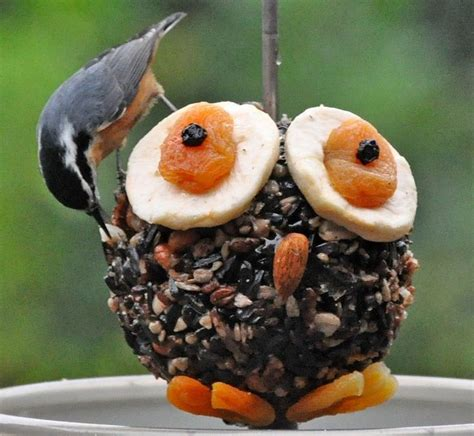 owl bird feeder diy bird feeders to make with kids
