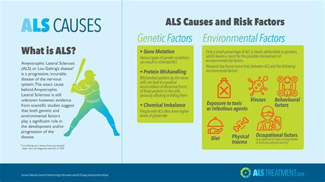 Amyotrophic Lateral Sclerosis Causes