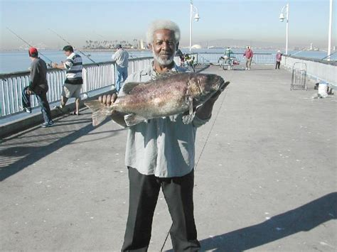Belmont Pier Fishing