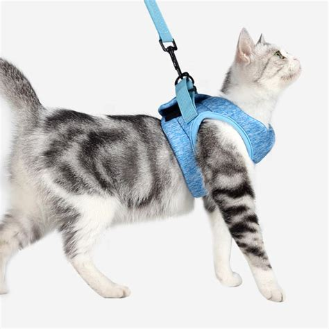 Cat Chest Harness