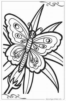 Malvorlagen Schmetterling Quiz Schmetterlinge Ausmalbilder Kostenlos Zeichnen F 252 R