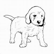 Ausmalbilder Hunde Baby Kleurplaat Golden Retriever Pup Puppy Theme On