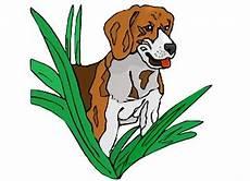 Ausmalbilder Hunde Beagle Ausmalbilder Hunde Beagle