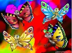 cute butterfly desktop wallpapers les baux de provence