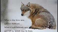 Spirit Wallpaper Wolf Pack Wolf