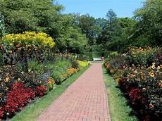 my virtual garden september 2015
