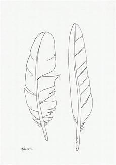 original tinte linie zeichnung 2 seevogel federn feder