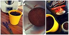 Kaffee Mahlen Thermomix - kaffeebohnen mahlen mit dem thermomix
