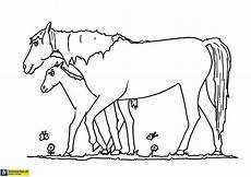 Malvorlagen Pferde Gratis Pferde Malvorlage Heimwerker De