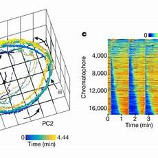 Chromatophore Tracking In Behaving Cuttlefish A