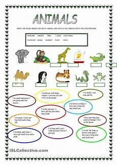 describe animals worksheets 13839 animals animales en ingles ingles para viajar