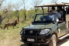 kruger national park bungalow sabi sand budget lodge safari