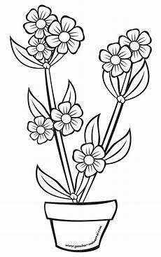 Gambar Bunga Di Pot Untuk Diwarnai Free Photos