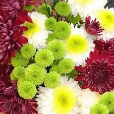 mandare dei fiori a distanza fiori per defunti