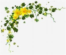 bordure en fleur yellow flower petals green leaves flower border clipart