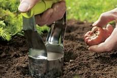 blumenzwiebelpflanzer spart kraft und m 252 he