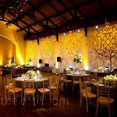 not necessarily this design but using gold lighting the walls to create visual interest