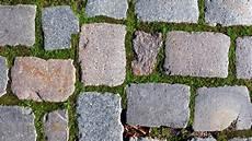 moos steinen entfernen moos entfernen einfaches hausmittel hilft gegen moos