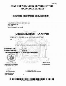 health iq insurance for the health conscious