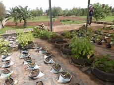 culture hors sol au centre association eau pour la vie