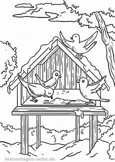 malvorlage vogel im winter vogelh 228 uschen ausmalbilder