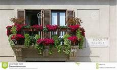 vasi da balcone balcone con i vasi da fiori in piazza navona roma