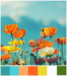 right here right now summery color inspiration