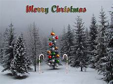 merry christmas decorated tree latest wallpapers hindi sms good morning sms good sms