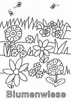 Ausmalbild Schmetterling Wiese Kostenlose Malvorlage Natur Blumenwiese Zum Ausmalen Zum