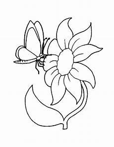 Ausmalbilder Blumen Schmetterlinge Ausmalbilder Blumen Bild Schmetterling Auf Eine Grosse Blume