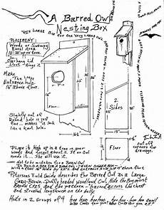 barred owl house plans owl creek gazette for the owlets