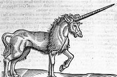 Unicorn Malvorlagen Adalah 350 Tahun Lalu Orang Jerman Percaya Ini Adalah Unicorn