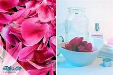 rosenwasser selber machen rezept anleitung talu de