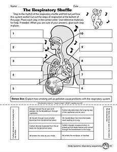 science worksheets respiratory system 12369 the respiratory shuffle the mailbox respiratory system activities