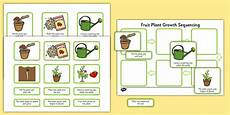 plants lesson ks1 13726 plant growth sequencing activity plants flowers grow growing