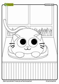 Malvorlagen Katze Quiz Bild Zum Ausmalen Katze Test