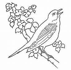 Vogel Malvorlagen Word Ausmalbilder V 246 Gel Zum Ausdrucken Vogel Malvorlagen