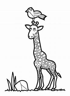 malvorlage giraffe einfach malvorlagen fur kinder ausmalbilder giraffe kostenlos
