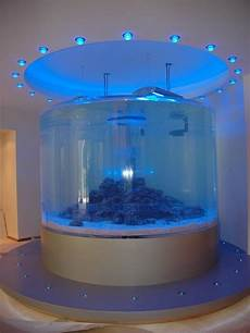 13 Besten Plexiglas 174 Aquariums Specialty Glazing Bilder