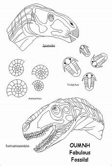 dinosaurs fossils coloring pages 16729 dinosaur fossil dinosaur fossil coloring pages