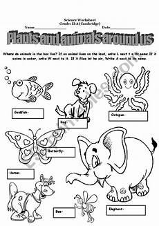 animals around us worksheets 14065 plants and animals around us esl worksheet by alina2