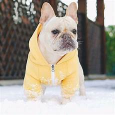bulldog clothes for dogs redd warm puppy pet winter clothes for small dogs hooded