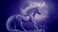 any color large unicorn wall unicorn hd wallpaper and background image 1920x1080